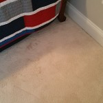 dayton carpet cleaning 2