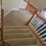 dayton carpet cleaning 9